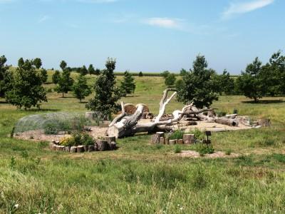 C2013_50063_Brenton Arboretum06
