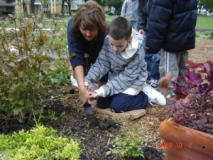 11. Pathways through Plantings-Teacher and student planting