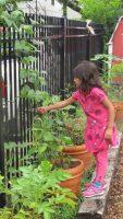 C2016_77098_poe cooperative nursery school-19