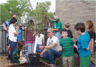 C2011_52240_Children's Discovery Garden 01