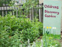 C2011_52240_Children's Discovery Garden 06