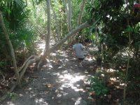 RC2016_32963_environmental learning center-006